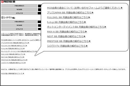 mgs_info_13